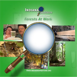 Forests at Work: An Indiana Expeditions Special